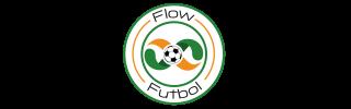 Flow Fútbol